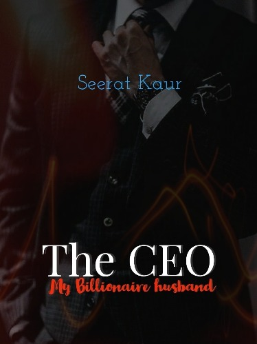 The CEO - my billionaire husband